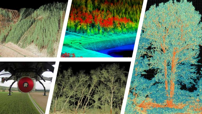 Forestry Applications for RIEGL's Waveform-LIDAR technology | ForestTECH