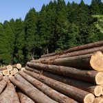 NZ forestry farm prices increase