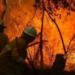 New bushfire risk mapping method