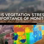 Part 1: What is Vegetation Stress and the Importance of Monitoring