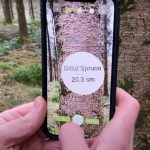 Making It Work: Forestry data firm branches into mobile technology